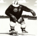 Skateboardmonkey