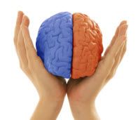 Brainhemisphere2